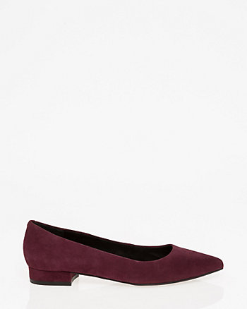 Suede Pointy Toe Flat