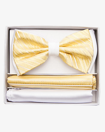 Stripe Bow Tie & Pocket Square Set