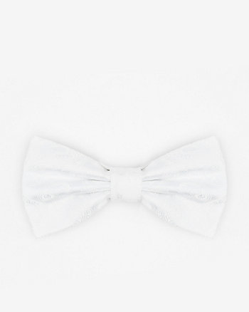 Paisley Print Microfibre Bow Tie