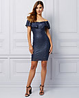 Stretch Lace Off-the-Shoulder Dress